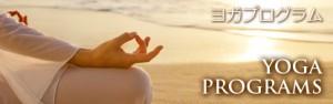 courses_img_yoga