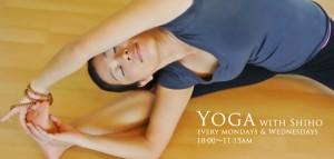 yoga2013-slide